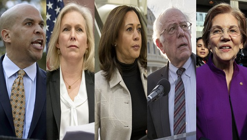 candidates 2020 1